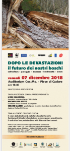 locandina Pieve 07-12-018