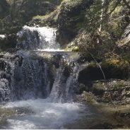 Vinto in Cassazione il ricorso contro l'impianto idroelettrico Piave-Sappada