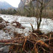"""Documento di sintesi terzo incontro pubblico """"Gestione e manutenzione dei corsi d'acqua montani nel contesto post alluvione. Quali priorità?"""" Pieve di C. 28-01-019"""