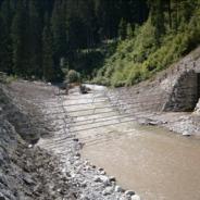 """Comunicato a seguito tavola rotonda """"Gestione e manutenzione corsi d'acqua nel contesto post-alluvione"""", Pieve di C. 28-01-019"""