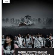 Pandemie, l'effetto boomerang della distruzione degli ecosistemi