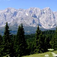 La montagna del futuro: cemento e collegamenti sciistici? c.s.